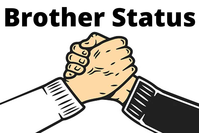 status for brother love in hindi