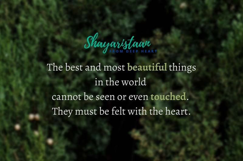 sad emotional shayari | The best and most beautiful things in the world cannot be seen or even touched. They must be felt with the heart.