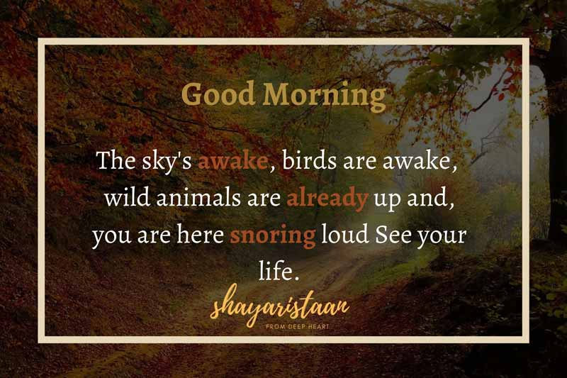 suprabhat quotes   # The🥰 sky's awake, birds🥰 are awake, wild🥰 animals are already🥰 up and, you are 🥰here snoring loud 🥰See your life. #