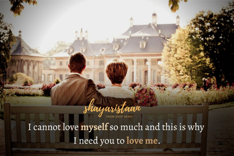 ishq shayari in hindi   I cannot love myself so much and this is why I need you to love me.