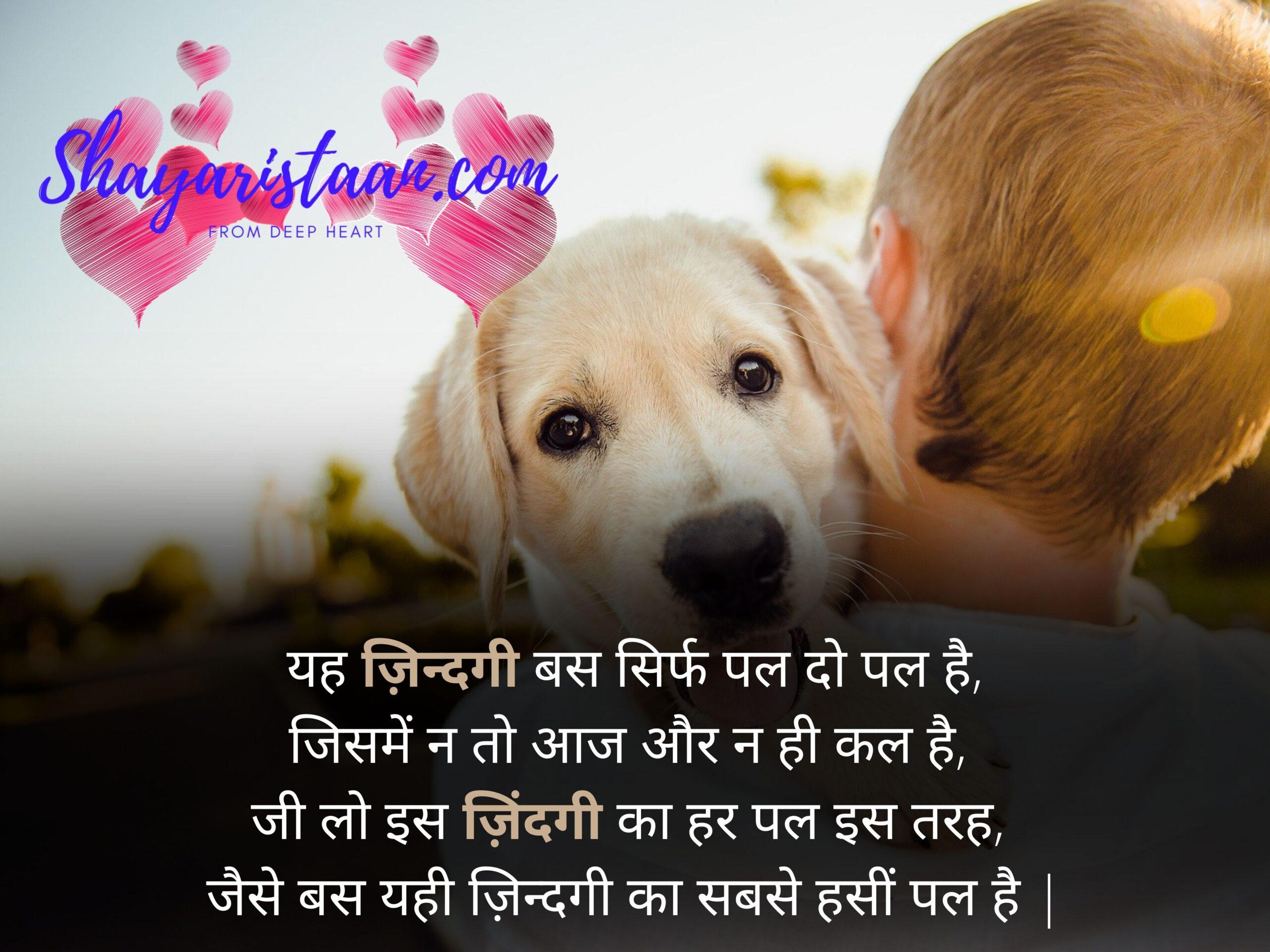 life shayari in hindi   यह ज़िन्दगी बस सिर्फ पल दो पल है, जिसमें न तो आज और न ही कल है, जी लो इस ज़िंदगी का हर पल इस तरह, जैसे बस यही ज़िन्दगी का सबसे हसीं पल है  